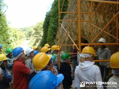 Yacimiento Atapuerca - Atapuerca y Alto Oca; madera tejo